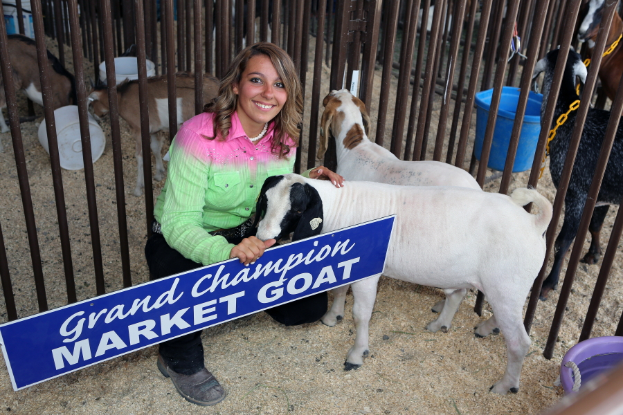 2013 Grand Champion Market Goat